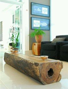 Fallen tree trunk coffee table