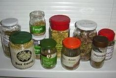 Jak se léčit bylinkami a kořením Healing Herbs, Korn, Salt And Pepper, Basil, Detox, Mason Jars, Health Fitness, Salt N Pepper, Mason Jar