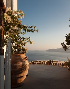 Flowers caldera Oia Santorini by Frank Hazebroek on 500px