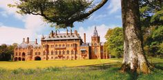 Mount Stuart House    Everywhere you look in this striking Victorian Gothic mansion, there is a piece of intricate detailing to be discovered. Famed for being home to one of the very first indoor heated swimming pools
