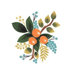BOTANICAL CLEMENTINE Temporary tattoo from Tattly