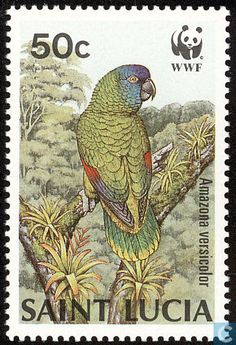 Saint Lucia 1987 Stamp - WWF-Birds