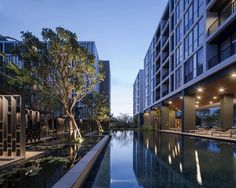 Gallery of Hasu Haus / Somdoon Architects - 3