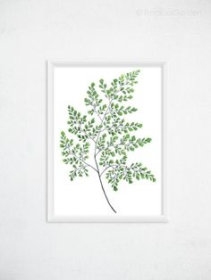 Maidenhair Fern Print  Botanical Watercolor Art by TropicalGarden