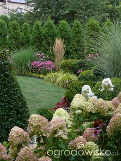 A small but roomy garden;) page 135 Garden forum Garden Outdoor Landscaping, Landscaping Plants, Front Yard Landscaping, Landscaping Ideas, Farmhouse Landscaping, Hydrangea Garden, Garden Shrubs, Back Gardens, Outdoor Gardens