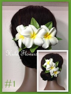 Hey, I found this really awesome Etsy listing at https://www.etsy.com/listing/180146323/hawaii-plumeria-flowers-hair-clip-for
