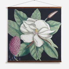 'Magnolia II' Wall Chart