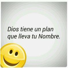 Ese plan es perfecto !!!