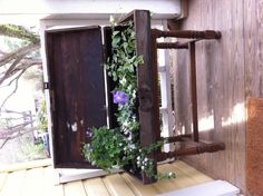 Old tool box found in a dumpster nailed to a piano bench. Perfect planter!!!