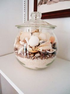 Colorful Home Decor shells in jar with sand.Colorful Home Decor shells in jar with sand Seashell Projects, Seashell Crafts, Beach Crafts, Seashell Display, Summer Deco, Shell Art, Apothecary Jars, Beach House Decor, Coastal Decor