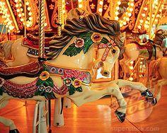 Carousel Horse on Merry-Go-Round