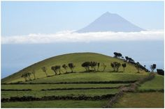 Azores ranked as the best sustainable destination in the world. Azores, Mount Rainier, Ecuador, Sustainability, Portugal, Tourism, Good Things, Mountains, Travel
