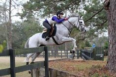 Jockey Rosie Napravnik not only rides racehorses but can actually jump too!? Inspiration!!!! Bad ass chick!!!