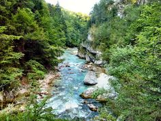 A bit northeast of the town of Tarvisio, Italy, the small river Slizza forms a short but picturesque gorge called Orrido dello Slizza.