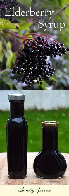 Recipe for Elderberry Syrup - can be used as a delicious dessert topping or as a natural anti-flu medicine!