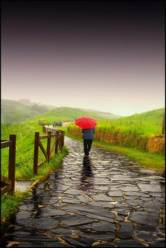 A walk on a rainy day.