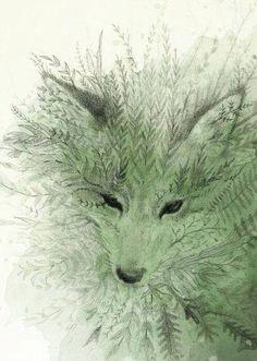 Fern Fox - can't find source to credit artist Illustration Art Dessin, Illustrations, Art Fox, The Magic Faraway Tree, Art Amour, Art Design, Anime Comics, Spirit Animal, Painting & Drawing