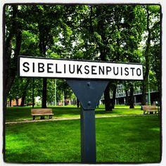 Sibeliuksenpuistossa soittavat puistonpenkit Sibeliuksen puusarjaa, puistossa soivat kuusi, mänty, pihlaja, koivu ja haapa.