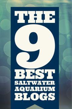 The 9 Best Saltwater Aquarium Blogs