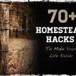 14 Tips for Building a Survival Farm