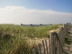 Race Point, Cape Cod, Mass