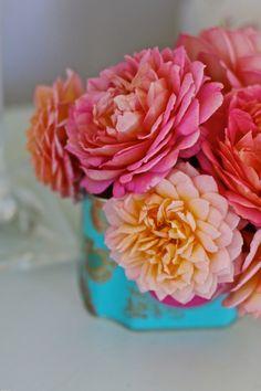 A Tea Caddy of Roses by Cherry Menlove Tea Caddy, Simple Flowers, Beautiful Flowers, Cut Flowers, Growing Flowers, Dried Flowers, Jubilee Celebration Rose, Cut Flower Garden, Growing Gardens