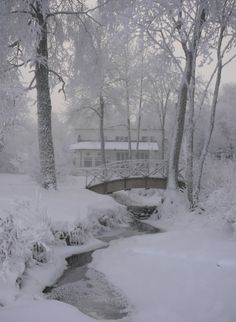 Lusting for a Winter Wonderland I Love Winter, Winter White, Winter Scenery, Winter Magic, Winter's Tale, Snow Scenes, All Nature, Foto Art, Winter Pictures
