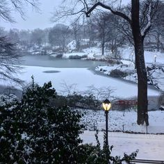 Hello Central Park by @tommygeenyc #WinterWonderland #CentralPark #NYC ❄️☃️ I❤️NY  #Christmas2016 - New York City Feelings