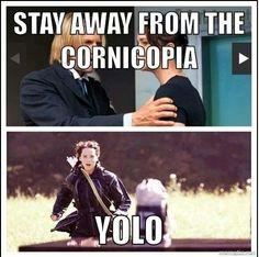 Did it wrong ,Katniss.#yolo