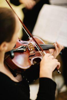 violinist   music + musicians
