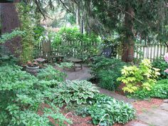 Landscaping Shade Garden Zone 4 - Google Search