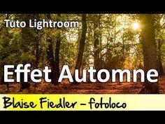 Cours Photo Gratuit: Lightroom effet automne