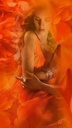 💜 My Positive Look 💜 Orange Aesthetic, Rainbow Aesthetic, Orange You Glad, Orange Is The New, Splash Images, Montage Photo, Coral, Aqua, Orange Crush