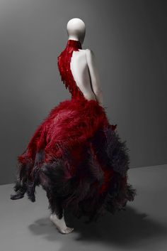 Google Image Result for http://exshoesme.com/wp-content/uploads/2011/02/alexander_mc_queen_glass_feathers_dress_red_savagebeauty.jpg
