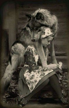 Okay, little old-timey dressed girl and her freakin gorgeous wolf. Regular people should not try to make wolves pets, but sometimes wolves choose to bond with humans, and when they do, that bond should be honored as a sacred trust. Wolf Love, Bad Wolf, Wolf Spirit, Spirit Animal, Beautiful Creatures, Animals Beautiful, Animals And Pets, Cute Animals, Wild Animals