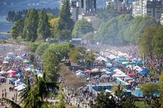 It was peak cannabis culture at Vancouver's Sunset Beach Wednesday as thousands of pro-pot protesters and dozens of vendors marked the annual high holiday. Seattle News, Seattle Times, Cannabis News, Medical Marijuana, Komo News, Weed Seeds, Ganja, The Fresh, Vancouver