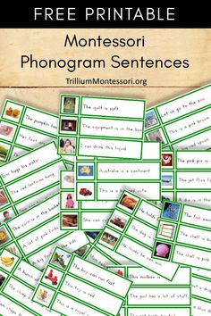 Free printable Montessori phonogram sentences...