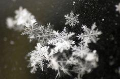 Like Ecksand pieces, each snowflake is unique