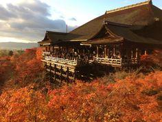 清水寺 (Kiyomizu-dera Temple)