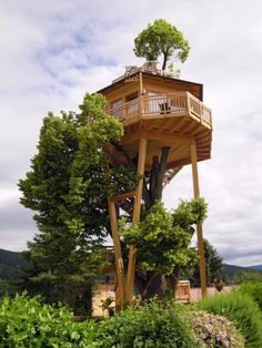 More ideas below: Amazing Tiny treehouse kids Architecture Modern Luxury treehouse interior cozy Backyard Small treehouse masters Plans Photography How To Build A Old rustic treehouse Ladder diy Treeless treehouse design architecture To Live In Bar Cabin Kitchen treehouse ideas for teens Indoor treehouse ideas awesome Bedroom Playhouse treehouse ideas diy Bridge Wedding Simple Pallet treehouse ideas interior For Adults