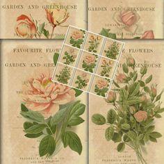 Vintage Flower Garden Botanical Illustration Shabby Chic Printable Instant Download Digital Collage Sheet Vintage Scrapbook Supply