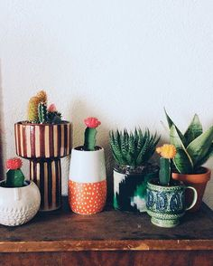 Create a ceramic garden by planting out cacti and succulents into cute, colourful cups and vases. Group them together on a sideboard for a statement mini-garden.