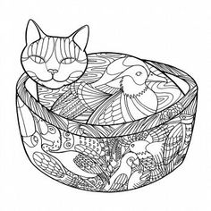 colouring books for adults waterstones cats on pinterest adult coloring coloring books and