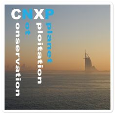 CNXP - Summer Conservation Not eXploitation of our Planet  - Bubble-free stickers