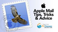 Want to master Apple Mail? This video will show you TONS of tips and tricks to make the most of Apple Mail. Let's face it, e-mail is one of those necessary e. Iphone 5s, Iphone Cases, Apple Iphone, Mac Notebook, New Ipad Pro, Settings App, Apple Mac, Iphone Photography, Helpful Hints