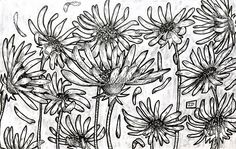 www.lucas2d.com #sketch #sketchbook #draw #drawing #ink #illustration #pattern #doodle #flower #flowers #flor #flores #leaf #leaves #nature #natureza #folha #folhas #natural #artwork #beautiful #rapport #plant #plants #love #fun #graphic #like #desenho #art