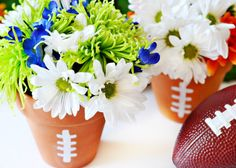 HGTV Football Terra Cotta Flower Pot Centerpiece