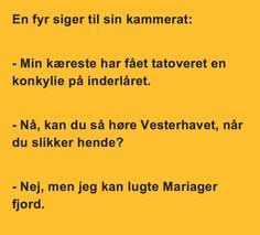 www.hyggestedet.dk - . Danmarks sjoveste hjemmeside med de bedste videoklip og billeder