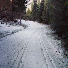 instagram.com/biegowkiwbieszczadach #biegowkiwbieszczadach #biegowki #ustjanowa #ustrzykidolne #narty #crosscountryskiing #nordicski #zima #winter #nordicwalking #bieszczady #poland