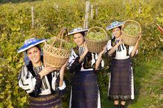 Romanian Wines and Vineyards - Jidvei Alba Romania Food, Black Sea, Girls Out, Wine Recipes, Wines, Costume, Traditional, People, Beautiful